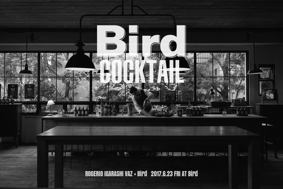 bird_cocktail1のコピー
